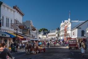 horses-tours-bike-carriage-tour-downtown
